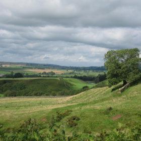 A big, beautiful landscape